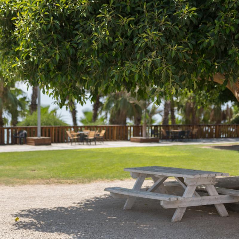 החוף שלנו הוא חוף ירוק ואנחנו פועלים באופן מתמיד  לקידום המודעות הסביבתית של מבקרי החוף -  הישראלים והתיירים כאחד.